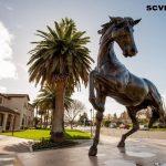 Hal Seru Yang Dapat Dilakukan Di Santa Clara County Bersama Anak